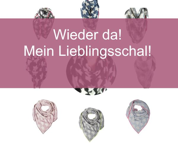 kaschmir-schal-sterne-zwillingsherz